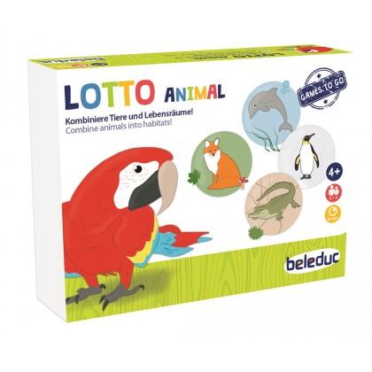 Lotto   Beleduc